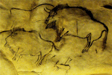Bison cave drawing. Photo credit: Matthew Pound, University of Leeds