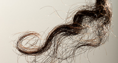 Hundred year old lock of hair