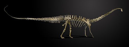 image of Misty the Dinosaur