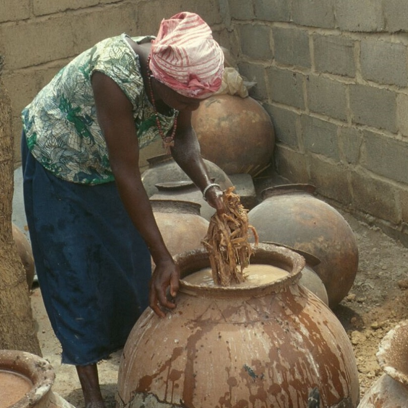 Fermentation creates sustainable growth in the West African food sector